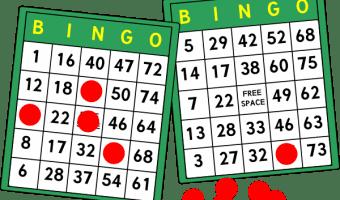 bingo-cards-hi[1]