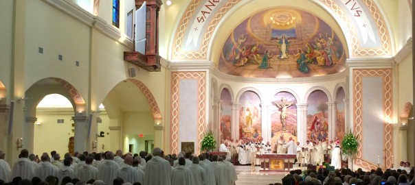 Redemptorists celebrate Chrism Mass | Sacred Heart ...